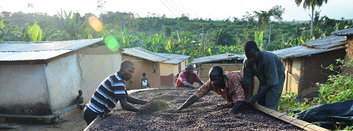 The Cocoa Life programme does not specify a minimum price for cocoa but Mondelez said farmers would not be any worse off under the new programme