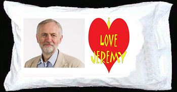 Express your affection with a tasteful Jeremy Corbyn pillow © Books by the Sea/Amazon