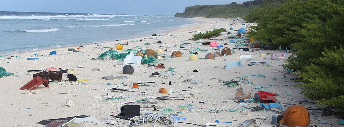 Research has found 38 million pieces of plastic on Henderson Island. Particularly disturbing because Henderson is 3,100 miles away from the nearest human habitation © Jennifer Lavers/University of Tasmania/PA Images