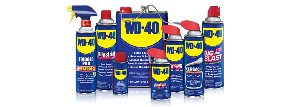 The WD-40 family