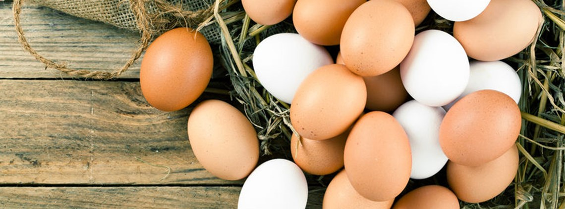 PFI president Ramesh Katri said egg prices had surged beyond the price of similar weighted chicken © 123RF