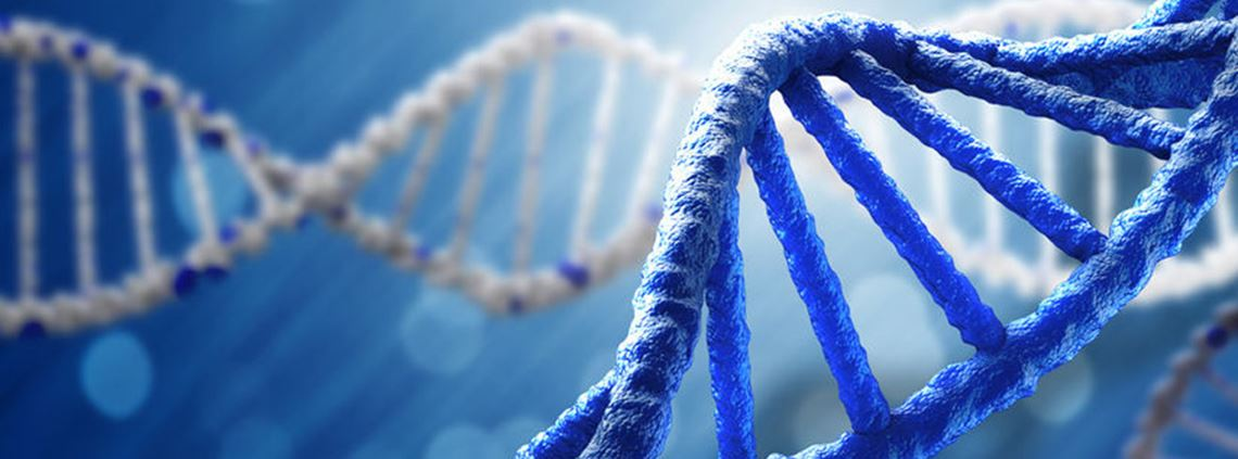 DNA of a CPO involved interviews with 94 execs © 123RF