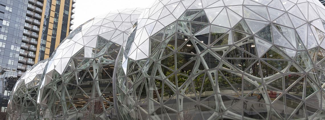 The Spheres, full of plants and trees, form part of Amazon's new Seattle HQ © PA Images