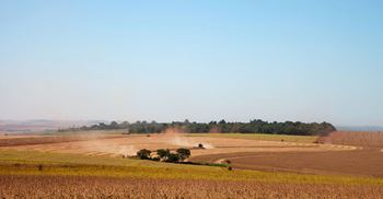 Soybean harvesting in Brazil has caused significant deforestation in recent years © Brazil 123RF
