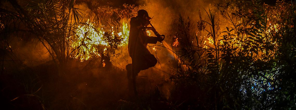 Indonesia fires hit agricultural and environmental sectors hardest. © Wahyudi / AFP/Getty Images